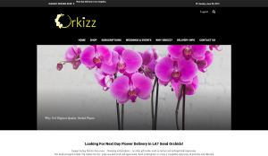 http://www.orkizz.com/